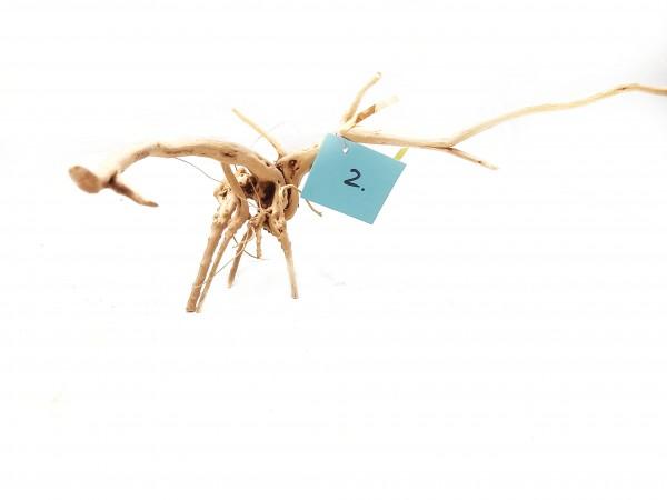 Aquariumdekoration und Fingerwurzeln für dein Aquarium und Nano Aquarium oder Aquascaping online kaufen