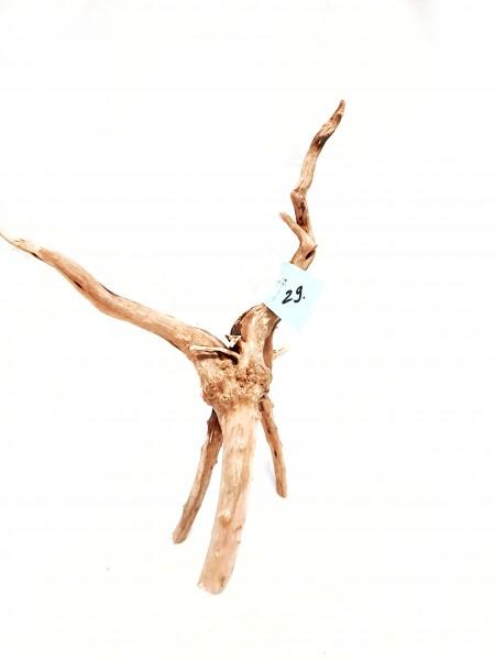 Fingerwurzen Nr. 29 tolle Moorwurzeln kaufen die Fingerwurzel für jedes Aquarium Wurzelparadies dresden