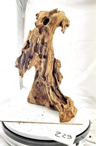 Mangrovenwurzel Nr. 229 die atemberaubende Mangrovenwurzel für dein Aquarium