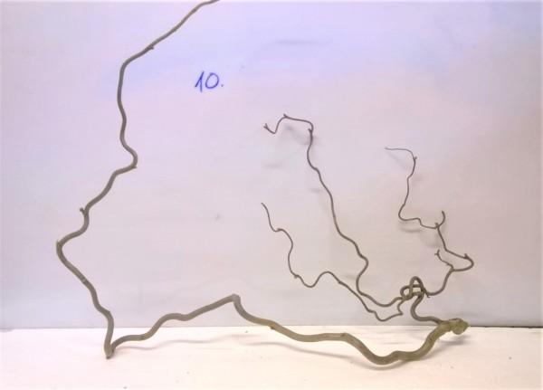 Korkenzieherhaselnuss Verzweigungen, Aquarium Dekoration Wurzeln Mangrove für Garnelen, Zwergkrebse und Schnecken