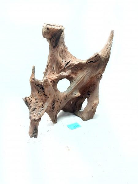 Mangrovenwurzel für Aquarien, tolle Mangrovenwurzel kaufen Nr. 124 bei Wiebies Aquawelt