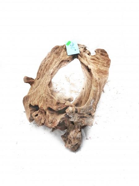 Mangrovenwurzel Nr. 30