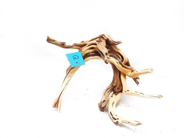 Fingerwurzel kaufen fantastische Wurzel im Aquaruium Onlineshop für Aquariumdekoration