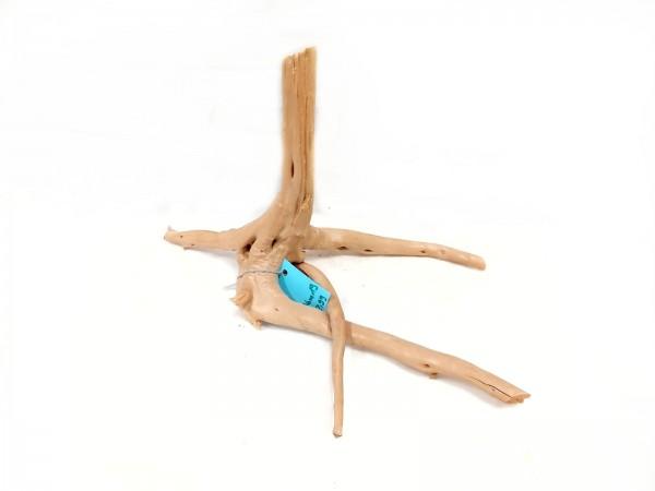 Nano Fingerwurzel, Nano Moorwurzel kaufen Spiderwood kaufen