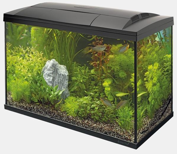 Start 100 Tropical Kit Aquarium