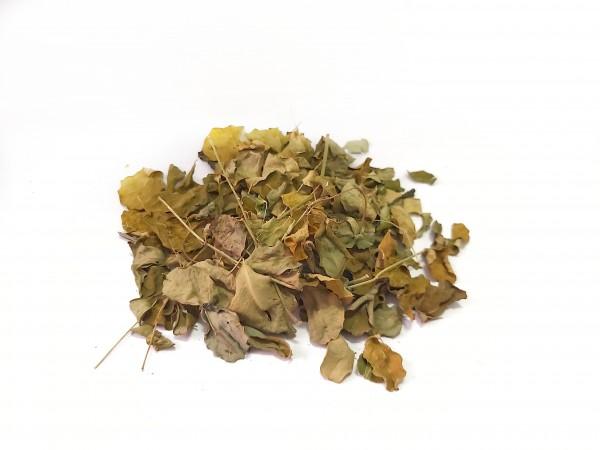 Moringa Blätter und Moringa Laub perfektes Futter für Garnelen und Krebse mit wertvollen Vitaminen, Moringa Blätter online kaufen