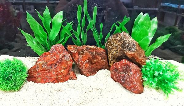 Roter Regenbogen Jasper Green African Steine, grüner Stein und blauer Sodalith sowie Drachenstein und vieles mehr bei Wiebies Aquawelt, das perfekte Hardscape für Aquascaper