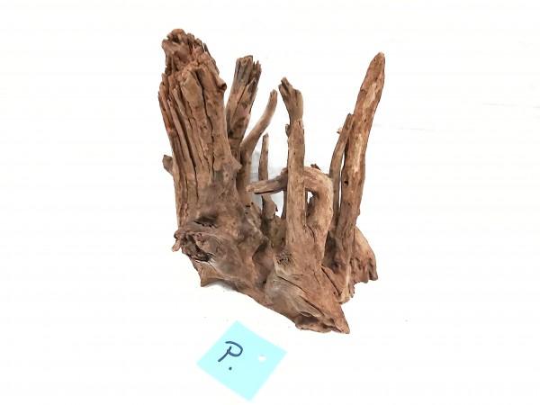 Fantasy Wood P 19cm x 20cm x 14cm