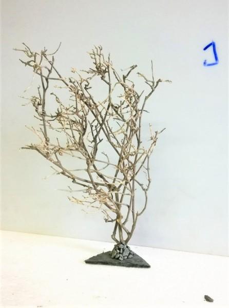 Unterwasserbaum, Garnelenbaum, Garnelen Bonsai, Bäumchen für Nano und Garnelenbecken