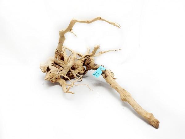 Spiderwood kaufen auqascape wurzeln online aquascape kaufen