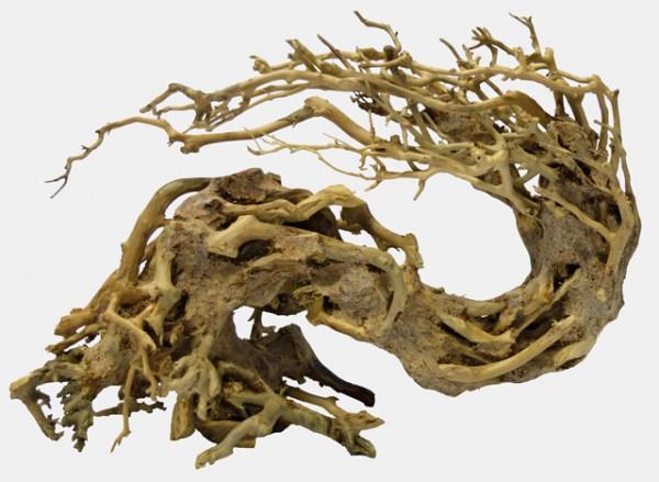 Bonsai Wave S der Unterwasserbaum für das perfeke Aquascaping