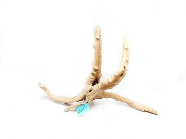 Moorwurzeln für dein Aquarium Fingerwurzel Aquarien und tolle moorwurzeln kaufen