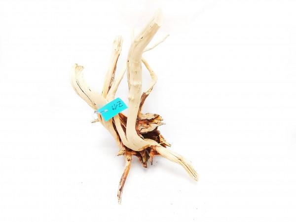 filigrane Aquariumeinrichtung die Moorwurzel kaufen und fingerwurzeln für dein Aquarium
