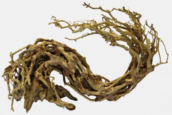Bonsai Wave M der Unterwasserbaum für das perfeke Aquascaping