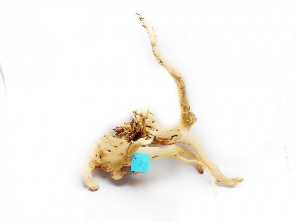 Wurzel im Aquarium Fingerwurzel im Garnelenaquarium ,Garnelenwurzel kaufen