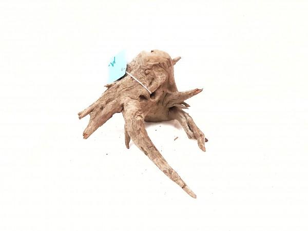 Fantasy Wood M die kleine Aquariumwurzel