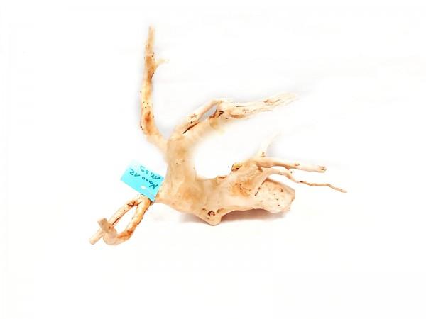 Fingerwurzel und Spiderwood Wurzeln für dein Aquarium kaufen Spiderwood online kaufen