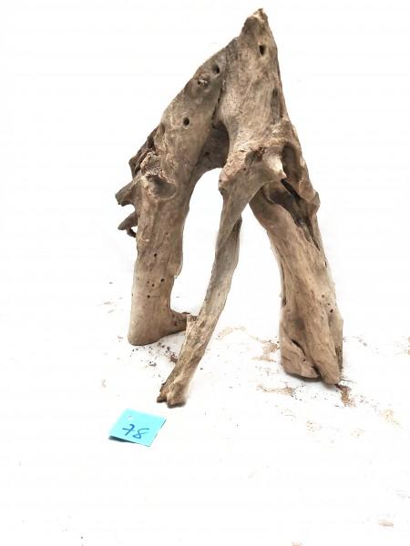 Mankrovenwurzel für Diskus und Skalar Aquarien, tolle mangrovenwurzeln online kaufen