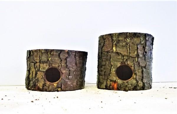 Barschhöhlen Erlenholzhöhlen Handarbeit Höhlen für Barsche aus natürlichem Ehrlenholz