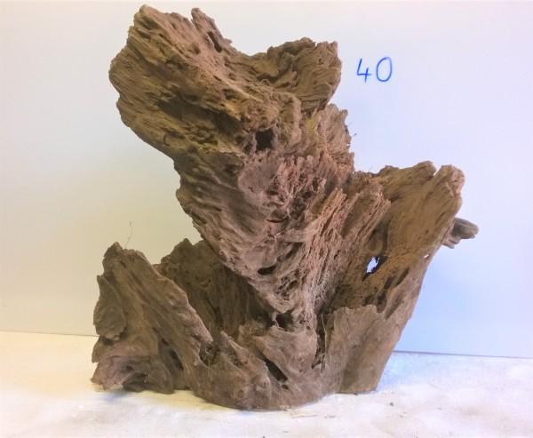 Mangrovenwurzel Nr. 40