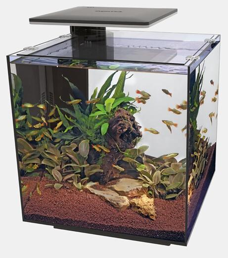 QubiQ 60 Pro - Cube Aquarium