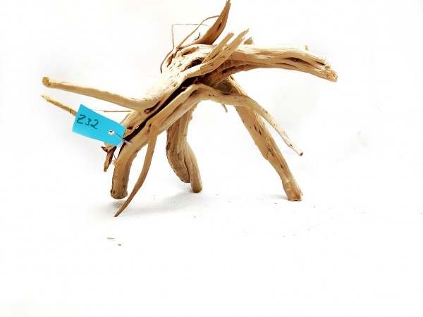rote Moorwurzeln - Fingerholz und Fingerwurzeln Fingerholz kaufen