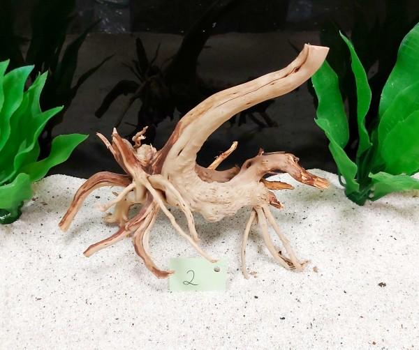 Fingerwurzeln, Moorwurzeln Nanowurzeln Deko für kleine Aquarien und viele tolle weiteren Wurzeln direkt vom Hobby Aquarianer