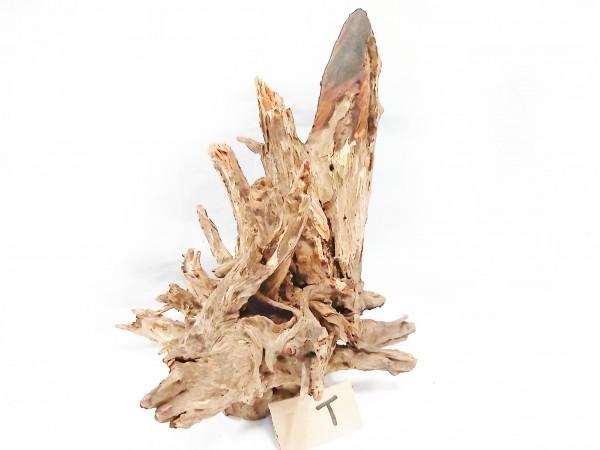 Fantasy Wood T 25cm x 22cm x 30cm