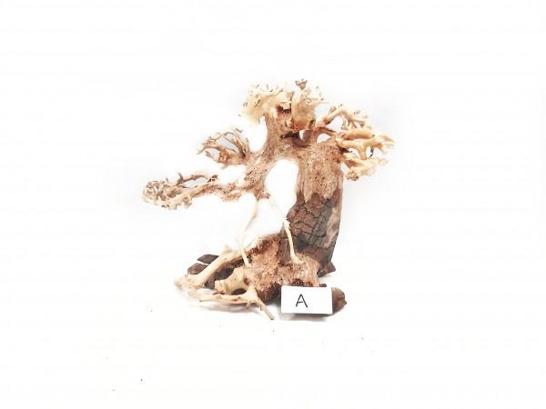 Garnelen Bonsai, Garnelenbaum, Garnelenbäumhen Aquascaping im Aqaurium Nano Aquariumbaum Varriante A