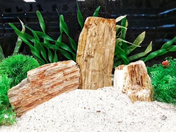 helles Steinholz die Tollen Steine für das Aquarium bei Wiebies Aquawelt