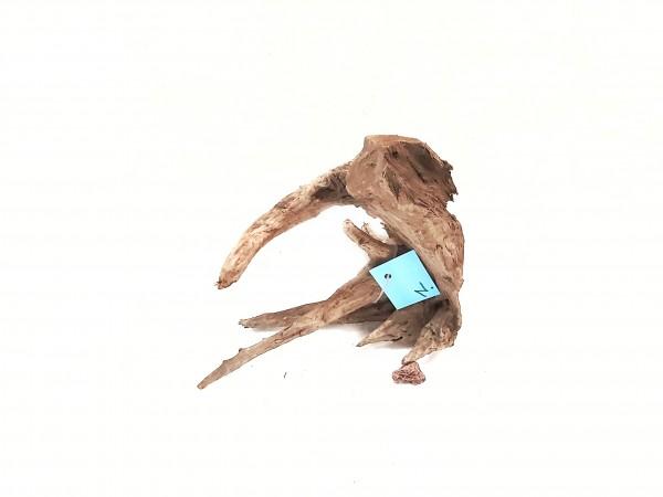 Fantasy Wood N das Nano Holz für kleine Aquarien, Mangrove kaufen Aquariumwurzel kaufen