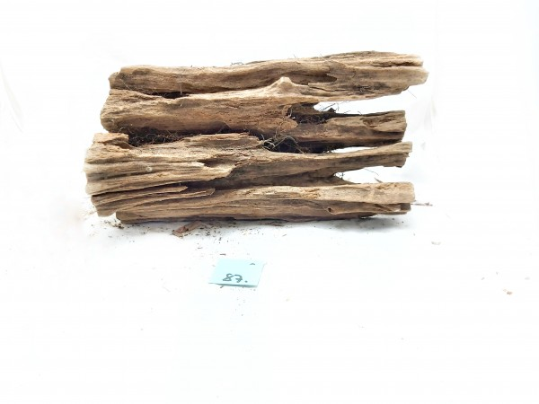 Mangrovenwurzel Nr. 18