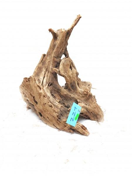 Mangrovenwurzel Nr. 221