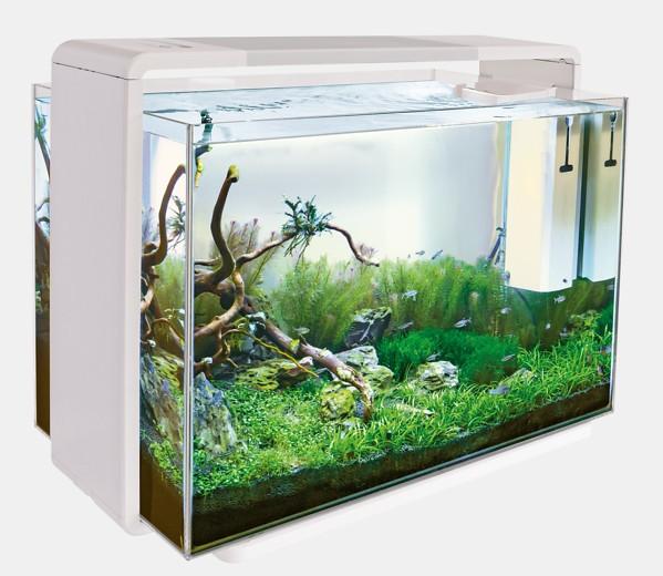Home 110 Design Aquarium