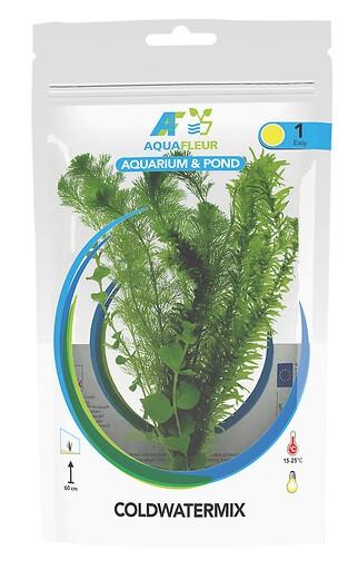 Kaltwasserpflanzen gemischt - Beutel