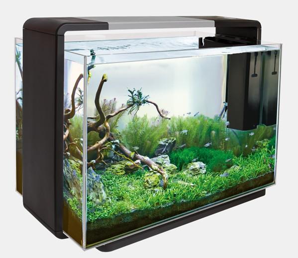 Das Home 110 Deginaquarium von Superfish und weitere tolle Aquarien, Zierfische und garnelen bei Wiebies Aquawelt