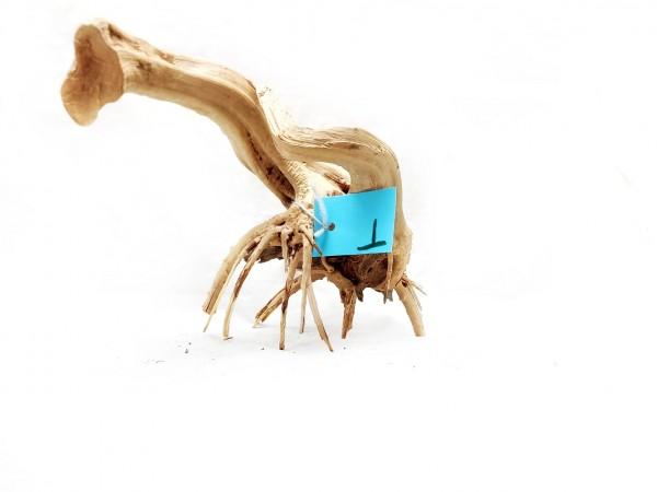 Spiderwood T die Fingerwurzel mit langen Ausläufern filigrane Wurzel kaufen